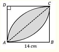 gambar arsiran lingkaran